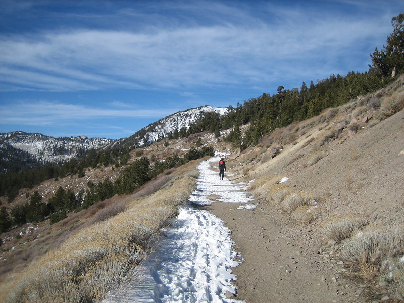 Some of the trail was bare