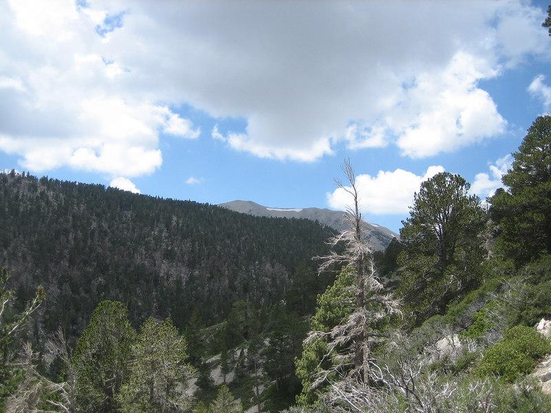 Looking towards Jepson Peak.