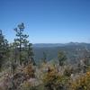 Mt. Wilson in the distance