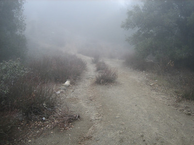 Mt. Wilson Trail 1-26-13