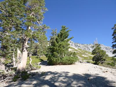Baldy Ski Hut - Notch 9-19-15