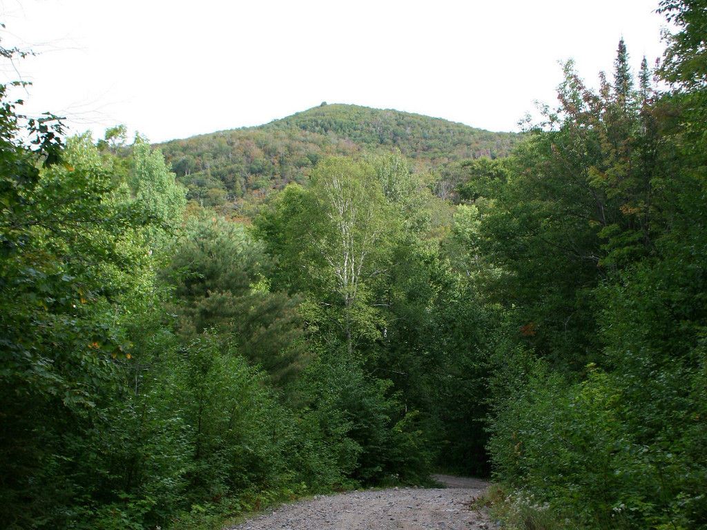 This was the only view of the mountain I would get from below.  This is Mile 38 Road about a mile from the trailhead...