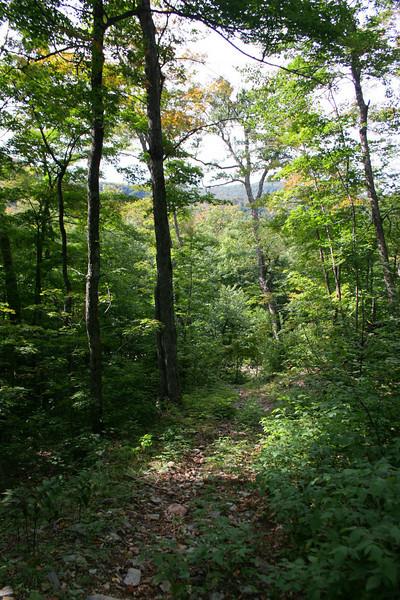 Batchawana Mountain 'Trail' -- 1,600'