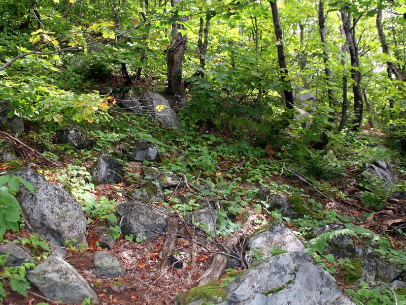 Batchawana Mountain 'Trail' -- 2,000'