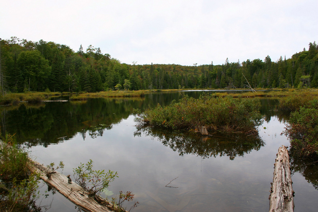 Another pretty pond, Little Turkey Lake, not far from the trailhead...