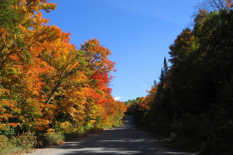Highway 546