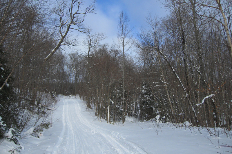 Mile 38 Road -- 1,560'