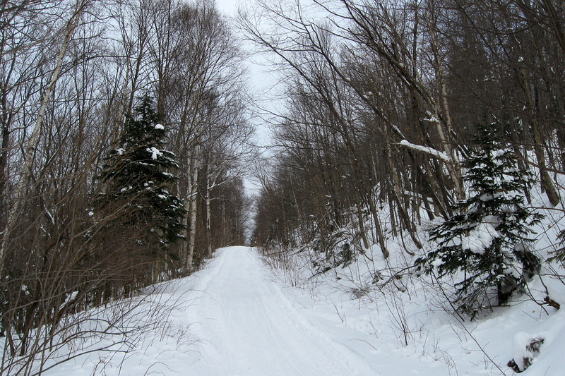 Mile 38 Road -- 1,300'