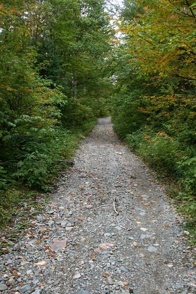 Mile 38 Road -- 1,350'
