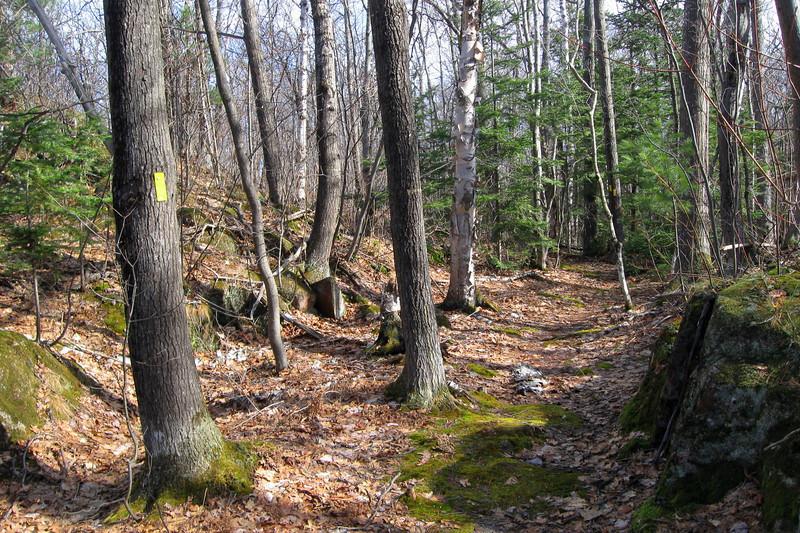 Gros Cap Loop Trail
