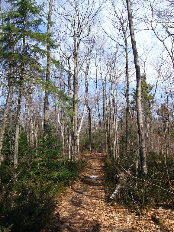Another pretty stretch of trail along as I neared the final overlook...