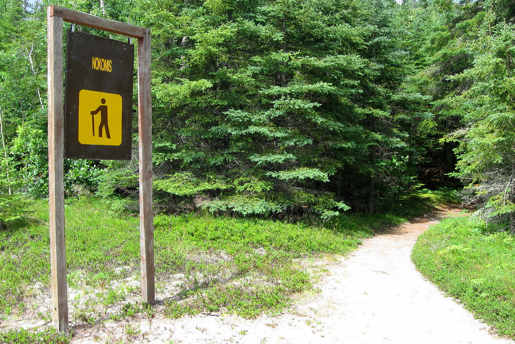 The inauspicious trailhead so common in Ontario Provincial Parks...