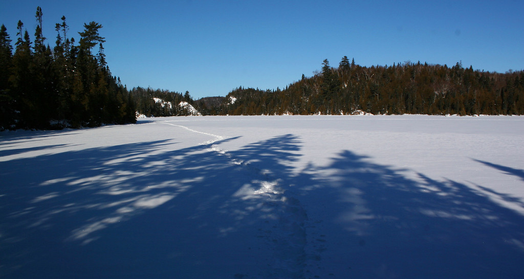 After a quick drop down to the lakeshore, I decided to stick to the nice flat ice rather than the un-tracked woods...