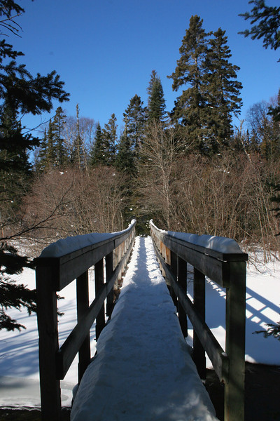 Coastal-Orphan Lake Trail Junction