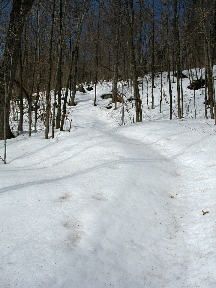 Peat Mountain Trail