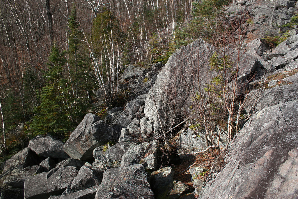 Before hitting the trail I decided to do some exploring around the boulder fields at the base of the cliffs...