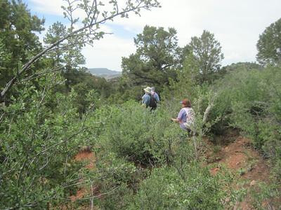 _6149 21June2014 Aikens Canyon hike