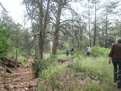 _6148 21June2014 Aikens Canyon hike