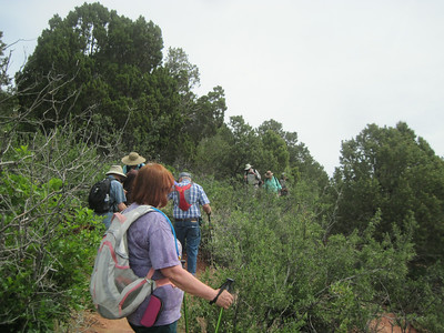_6150 21June2014 Aikens Canyon hike, watch your step