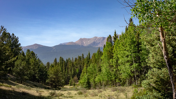 Meadow framed by Pikes Peak.