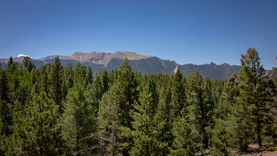 Timberline above the trees. Pikes Peak and The Crags.