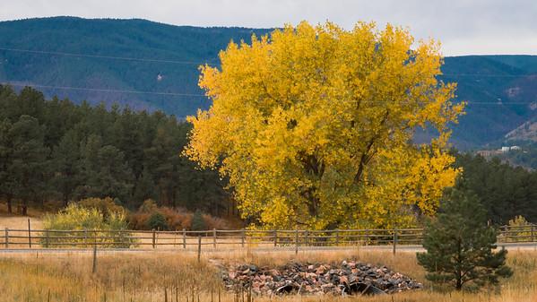 Dawson Hike-Fall-00567