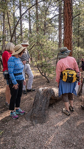 Hike-PrayerTrees8-16-18-06492