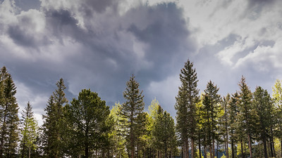 Mueller State Park -06-01-17 Gathering Rain Clouds-08004