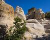 Pulpit Rock-Rough Terrain-04134