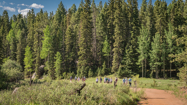 Rainbow Gulch 6-21-17 And We Continue-08480