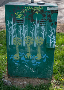Creative Utility Box Covering