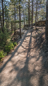 Spruce Mountain - On the Trail-08659