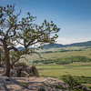 Spruce Mountain - On the Trail-08662