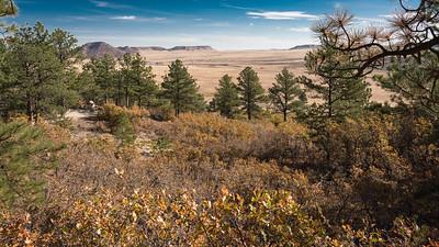 Spruce Mountain-00401