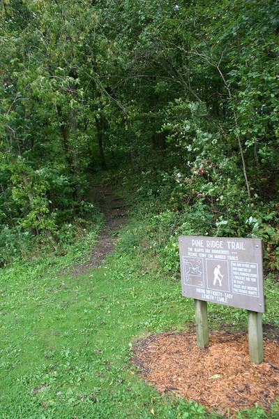 Pine Ridge Trail