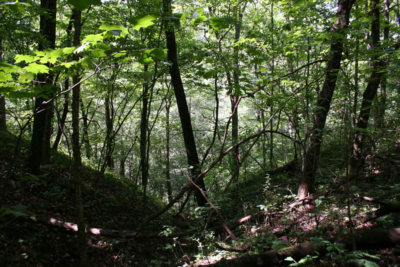 Tower Rock Nature Trail