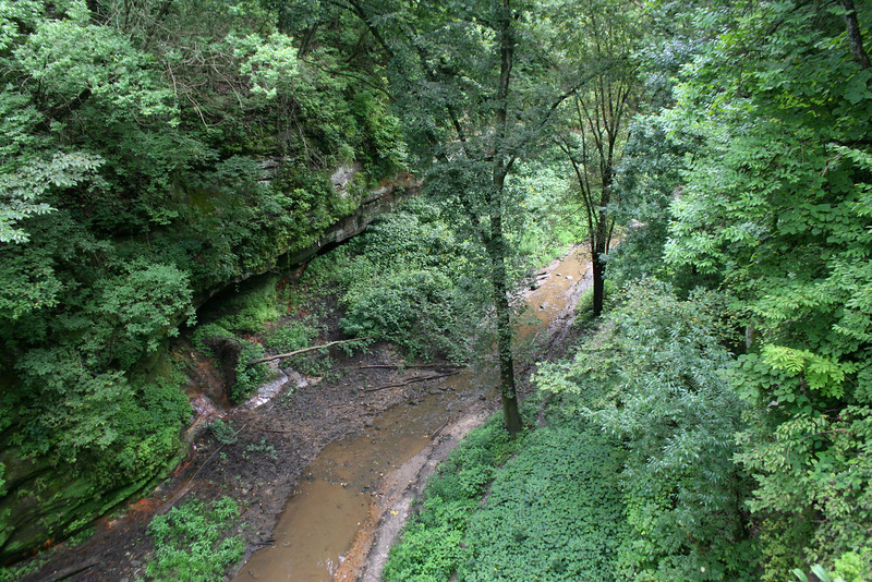 Looking down into the lower dells from the bridge that crosses at their south end...