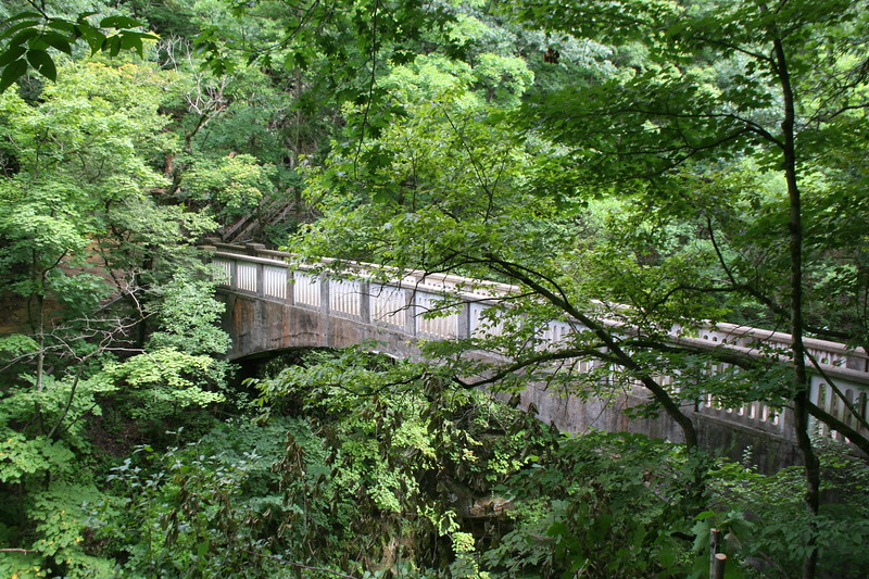 Quite an impressive structure for a state park...this concrete bridge spans the gorge near its midpoint, dividing the trail system into two neat halves...