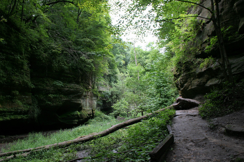 The trail along the floor of the lower dells is less well maintained and quite muddy...