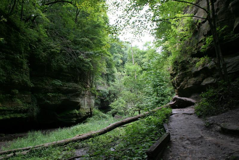 Lower Dells Trail