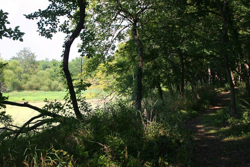 Prairie Creek Woods Trail