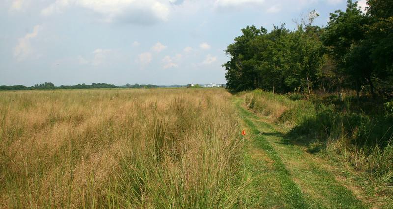 Prairie edge...