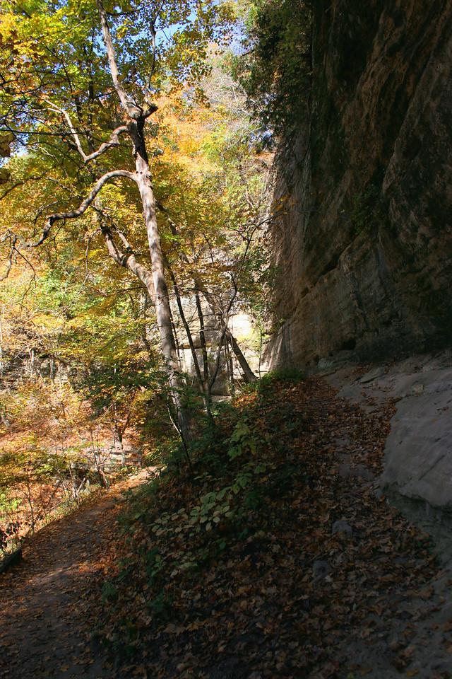 LaSalle Canyon