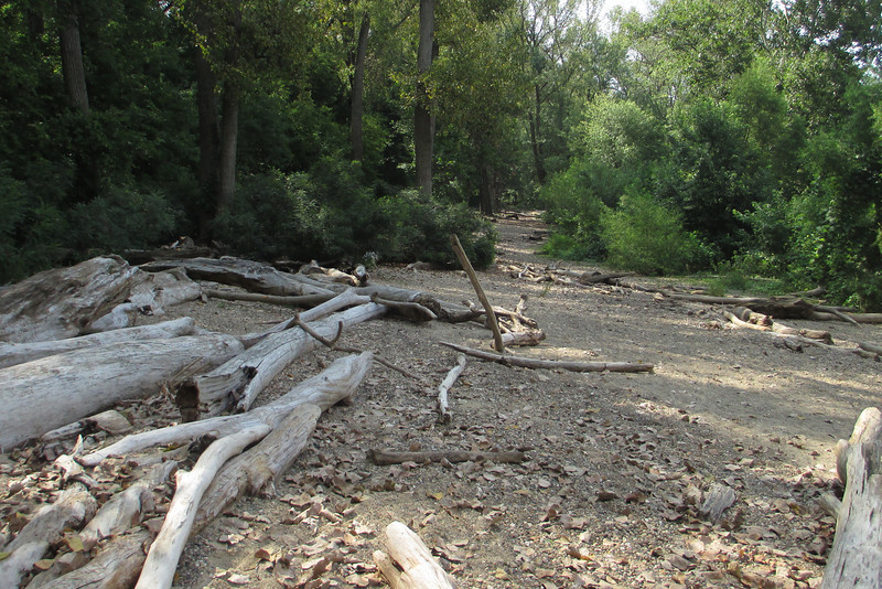 The trail shortly broke out along the Ohio on this huge gravel sand bar strewn with driftwood...