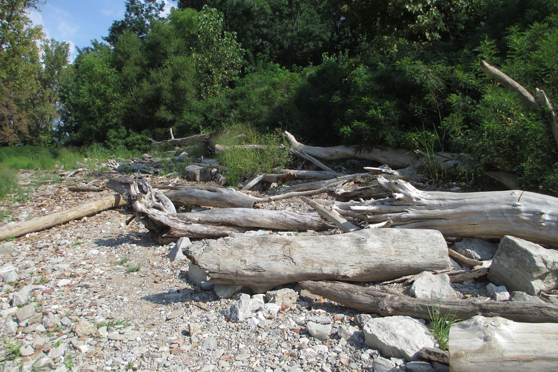 Fossil Beds Trail