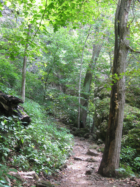 'Lower Gorge' Trail