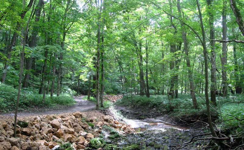 'North Gorge Floor' Trail