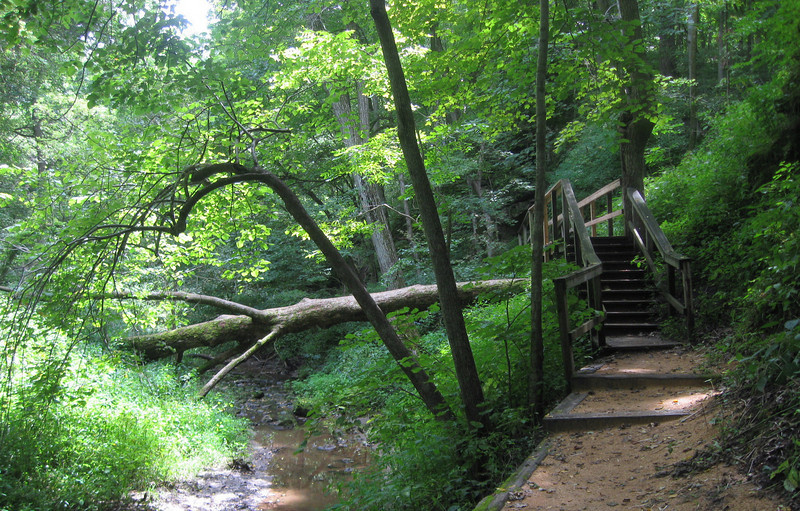 'Upper Gorge' Trail
