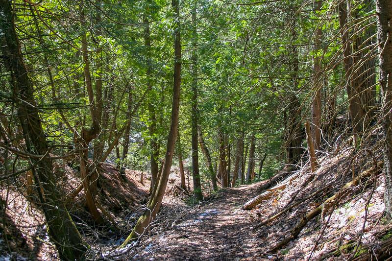 Preserve Loop Trail -- 680'