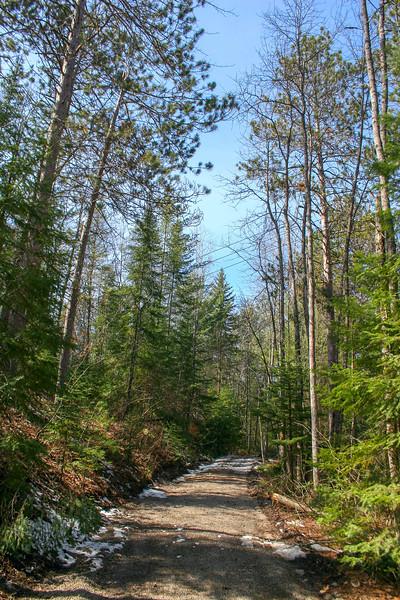 Agnes Andrae Access Road 'Path' -- 710'